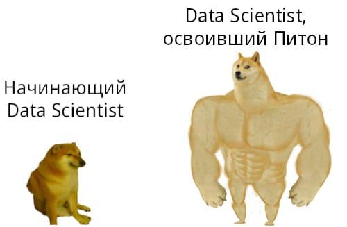 Почему Python - идеальный язык для начинающего Data Scientist'а: ТОП-5 причин