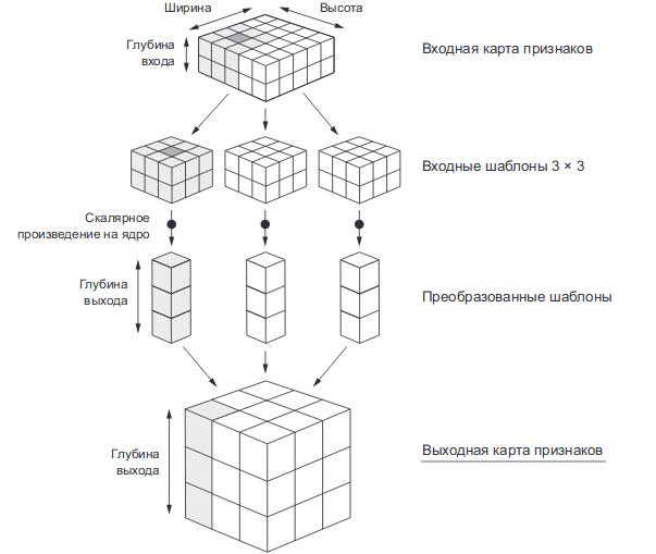Преобразование выходной карты признаков convolutional neural network (сверточные нейронные сети)