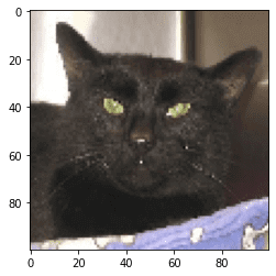 Визуализация кошки TensorFlow
